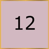 12 (Copy)