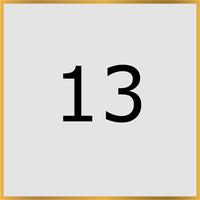 13 (Copy)