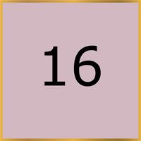 16 (Copy)