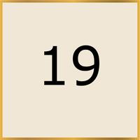 19 (Copy)