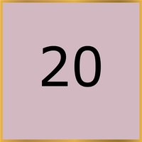 20 (Copy)