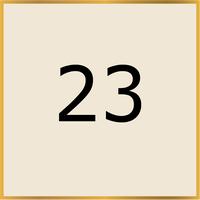23 (Copy)