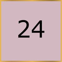 24 (Copy)