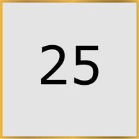 25 (Copy)