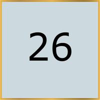 26 (Copy)
